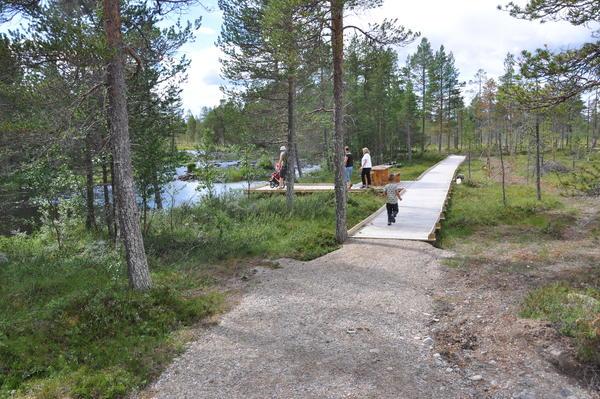 Plankevei (Foto/Photo)