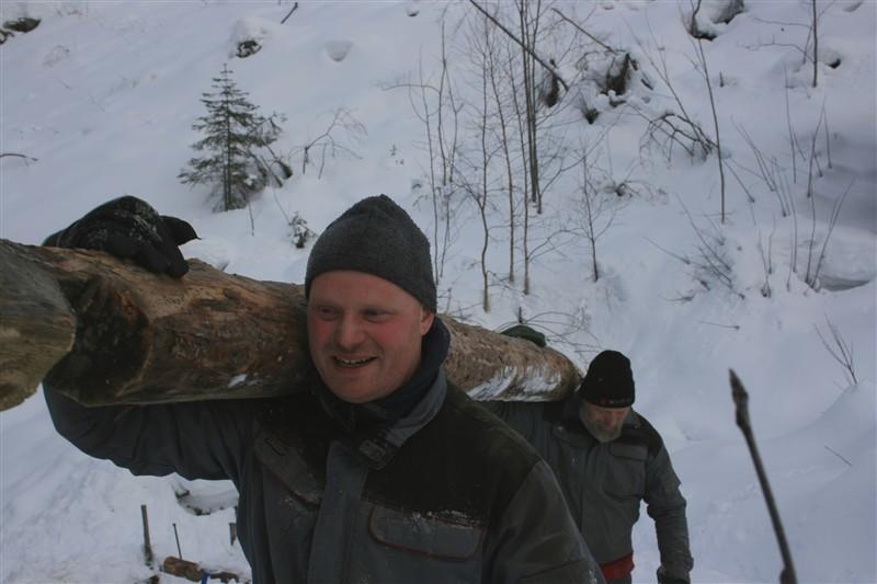 Flytting av stokker (Foto/Photo)