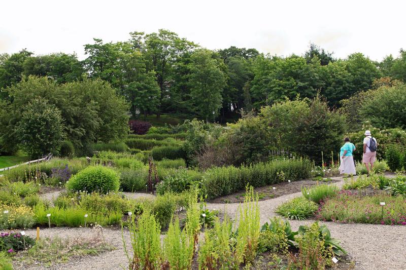 Systemet i Botanisk Hage (Foto/Photo)