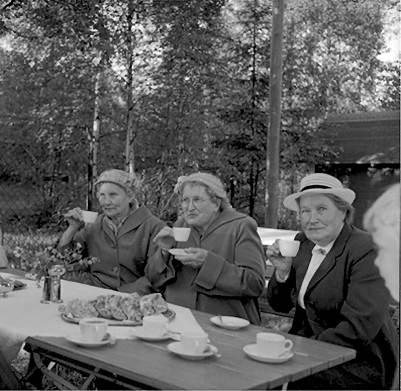 Pensionärsfest i Folkparken.
