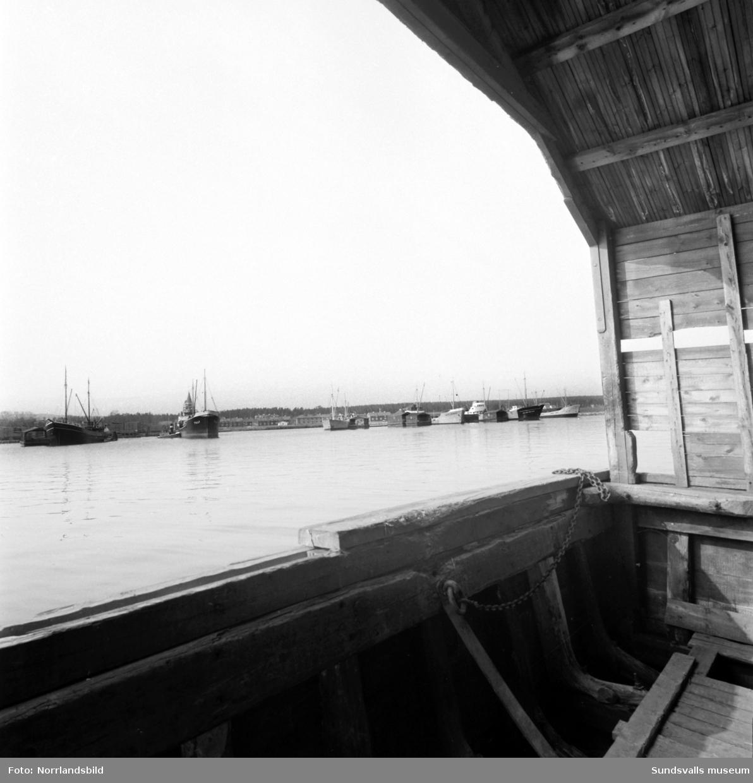 Utlastningsbrådska vid Vivstavarv. Sex fartyg låg på redden och lastades med trävaror från pråmarna, en tysk, två svenska och tre holländska båtar. Såväl stuvarna som brädgårdsarbetarna fick jobba övertid och extra skift för att klara rushen. I bakgrunden syns arbetarlängorna vid Skeppsvägen.