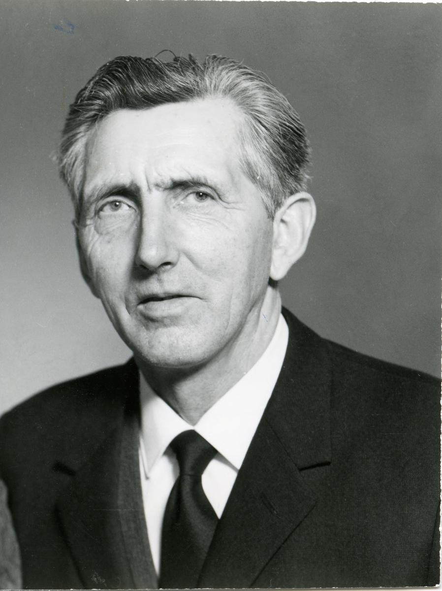 Portrett av Arne B. Gjerdalen.