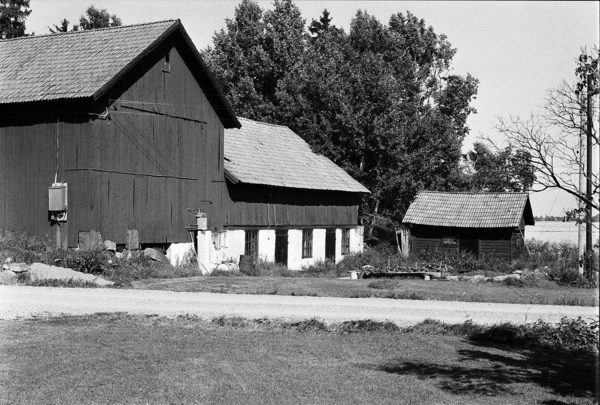 Ladugård, Lada och svinhus, Skuttunge 6:4, Skuttunge socken, Uppland 1984