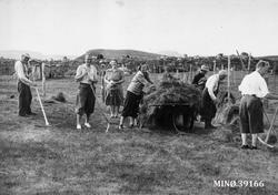 Høykjøring på Breisjøsetra. Turister hjelper Martinus og Ott