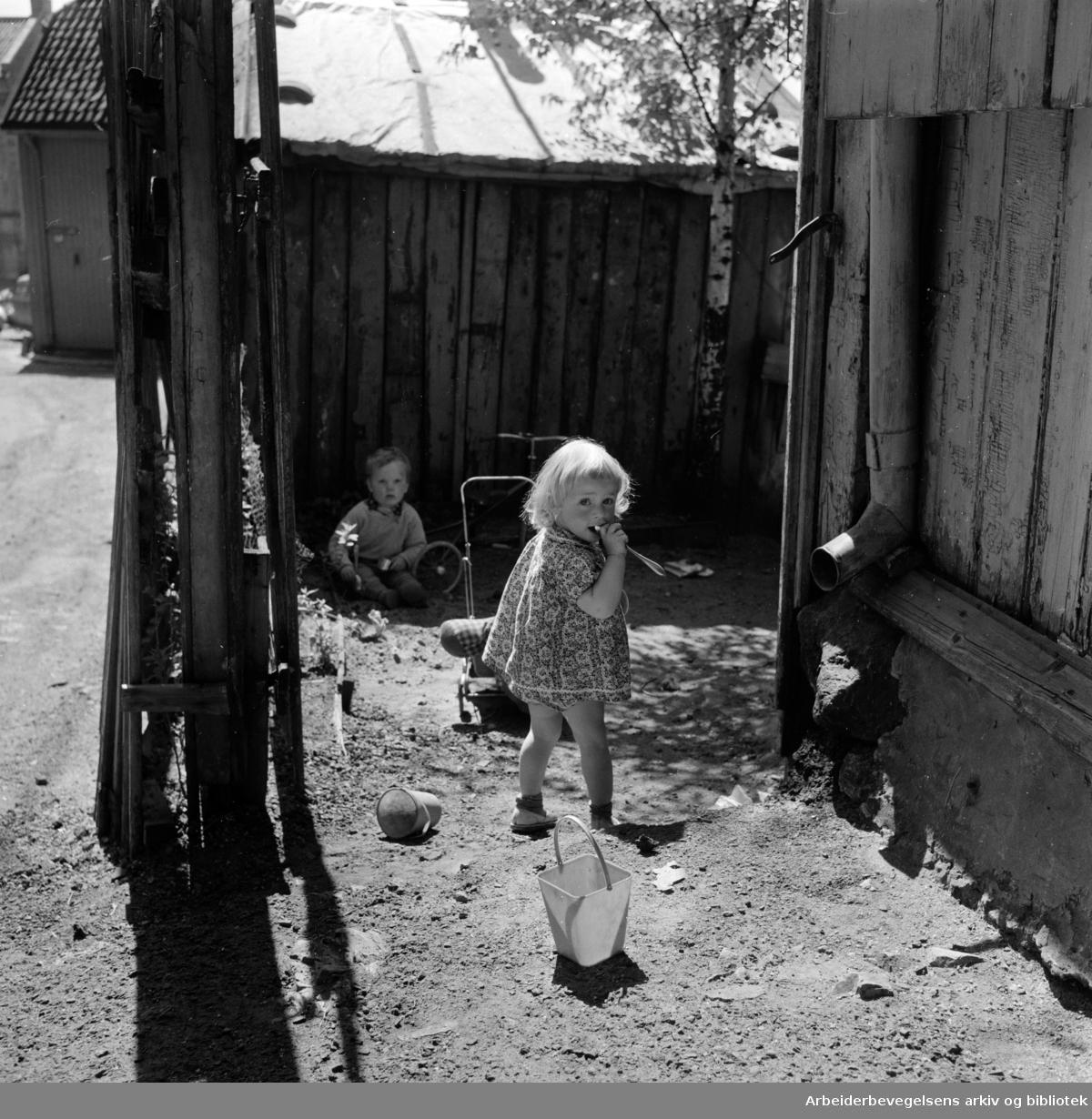 Enerhaugen: .Mai 1959