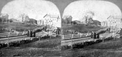 Et stereobilde fra Langveien før den ble asfaltert. Et svært