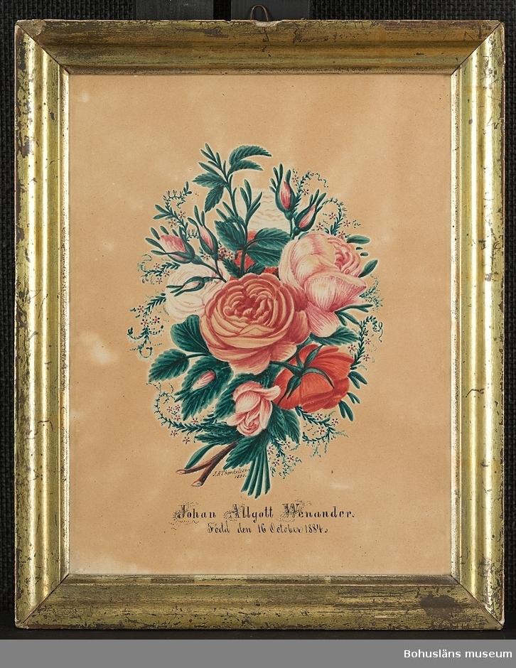 """Minnestavla med målad rosenbukett i akvarell med text under i svart tusch: """"Johan Algott Wenander född den 16 october 1884."""" och sign. strax under buketten av J.A. Thorkelsson 1890. Guldlistramad."""