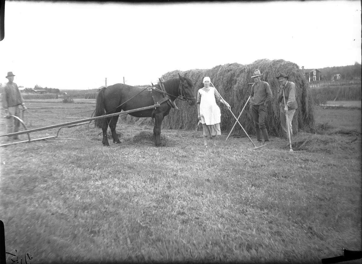 Slåtter. Till höger om hästen; Ida, Salomon och Johan Åberg, Balka, Mossbo.