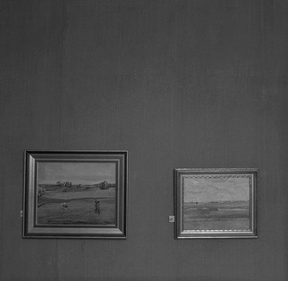 Foto av två tavlor med olika naturmotiv.