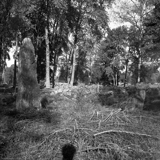Foto av möjligen en röse, (hällkista) och gravsten?