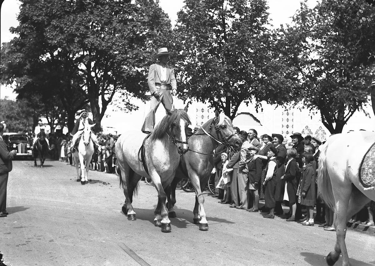 År 1938. Vårreportage. Cirkusparad. Reportage för Gefle Dagblad Hästar