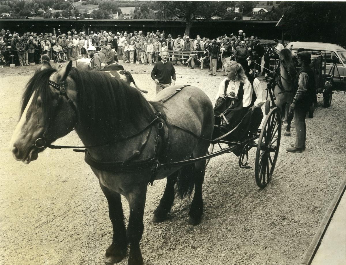 Hest med kjerre framfor scena