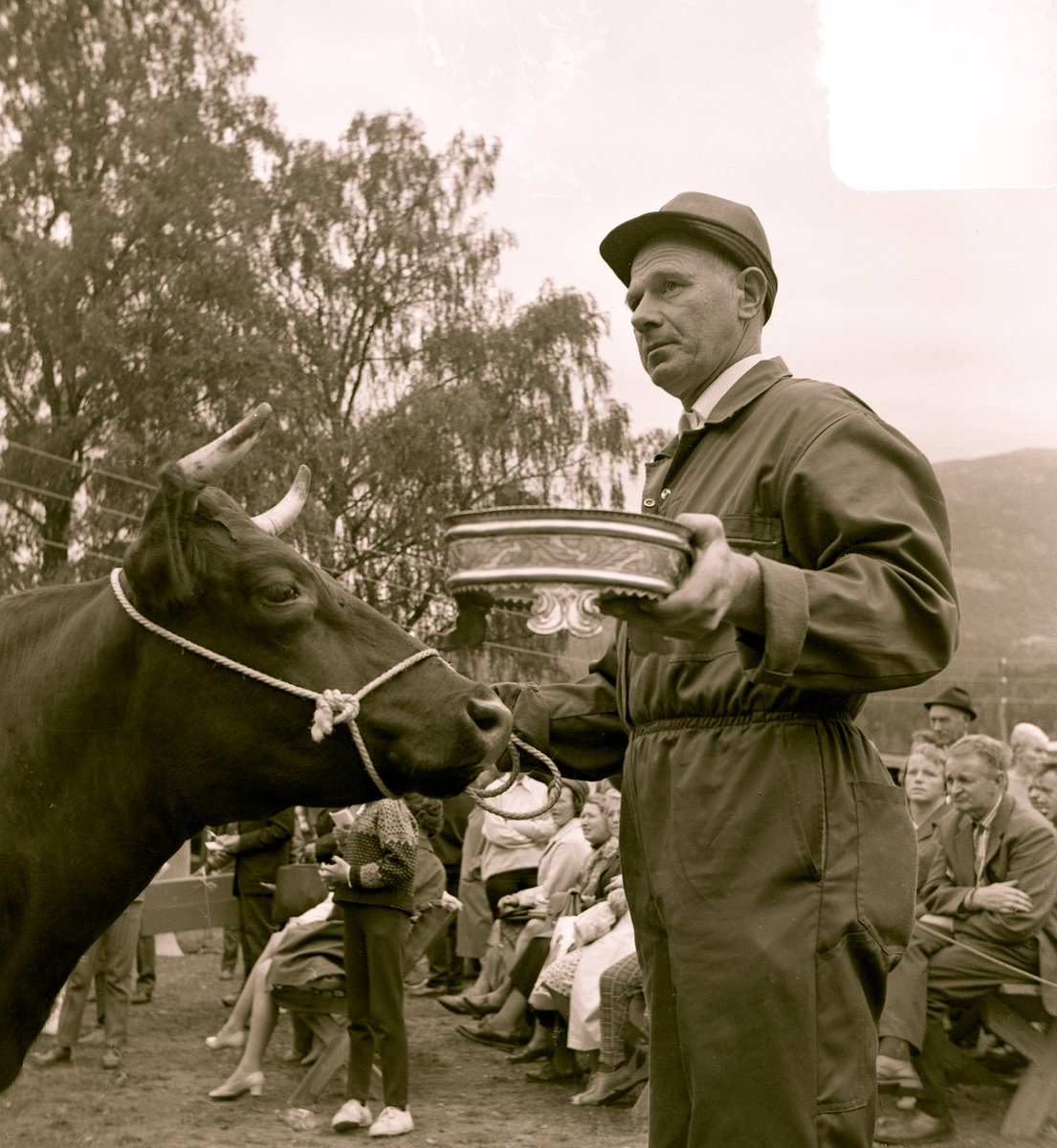 Reidar Stordal fekk Seljordprisen i 1969  for Gullmøy.