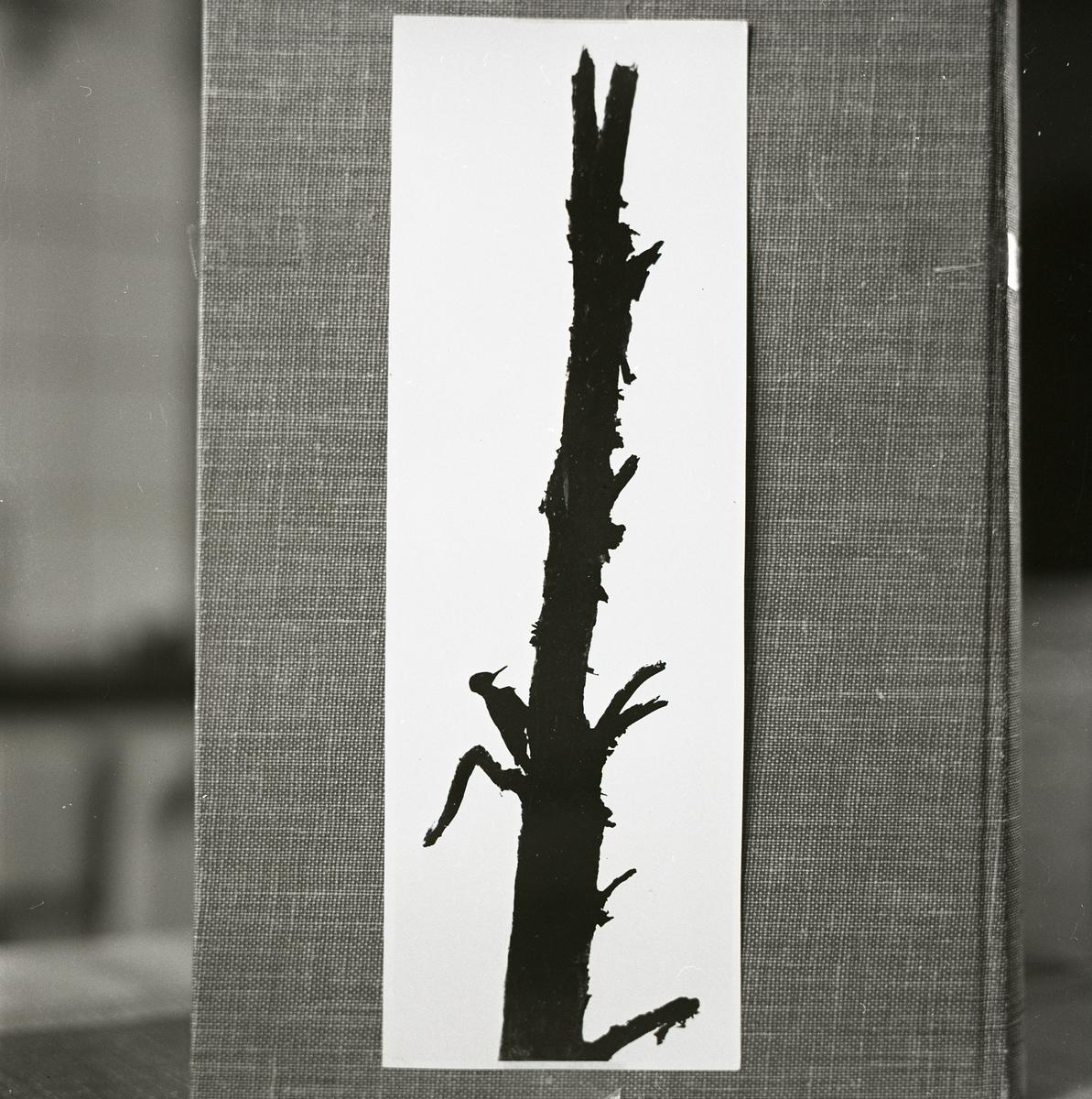 På ett vävt bokomslag ligger en siluettmålning som föreställer en spillskråka hackandes på ett grenigt och avbrutet träd.
