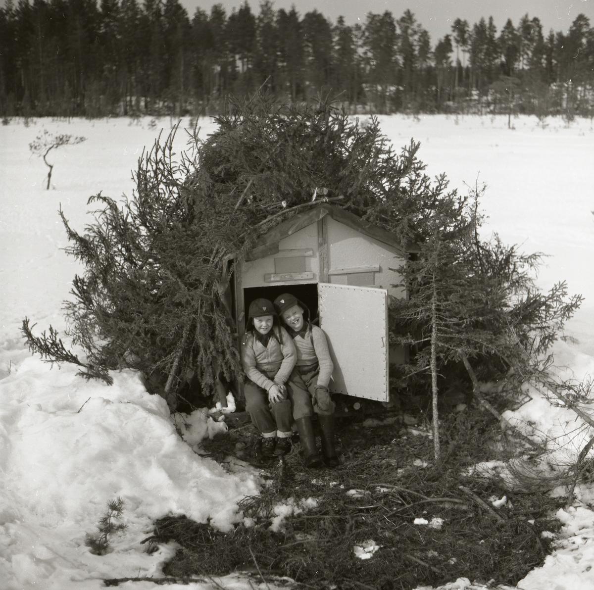 I dörröppningen till en koja sitter två barn och ler mot fotografen. Pojkarna bär matchande kläder bestående av ljusa tröjor, gråa byxor och svarta mössor. Kojan täcks av granris över taket och framför dörren ligger en granrismatta. Runt kojan ligger snön decimeterdjup med enstaka fotspår som avslöjar människornas närvaro. Skogen i bakgrunden ramar in det öppna fältet där kojan är placerad.