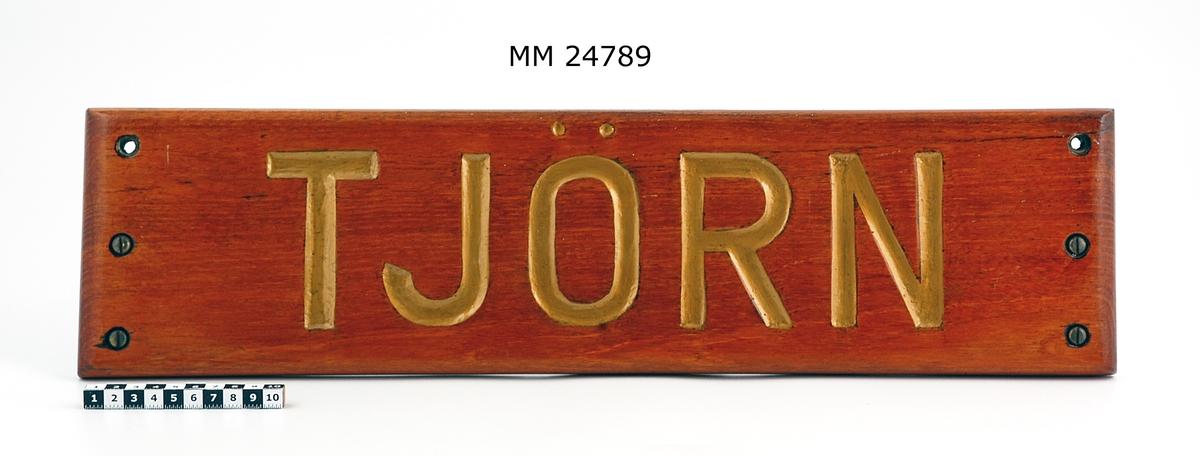 """Namnbräda Tjörn. Rektangulär platta av fernissat trä med bokstäver i relief. Bokstäver i guldfärg: """"Tjörn"""". Hål för upphängning."""