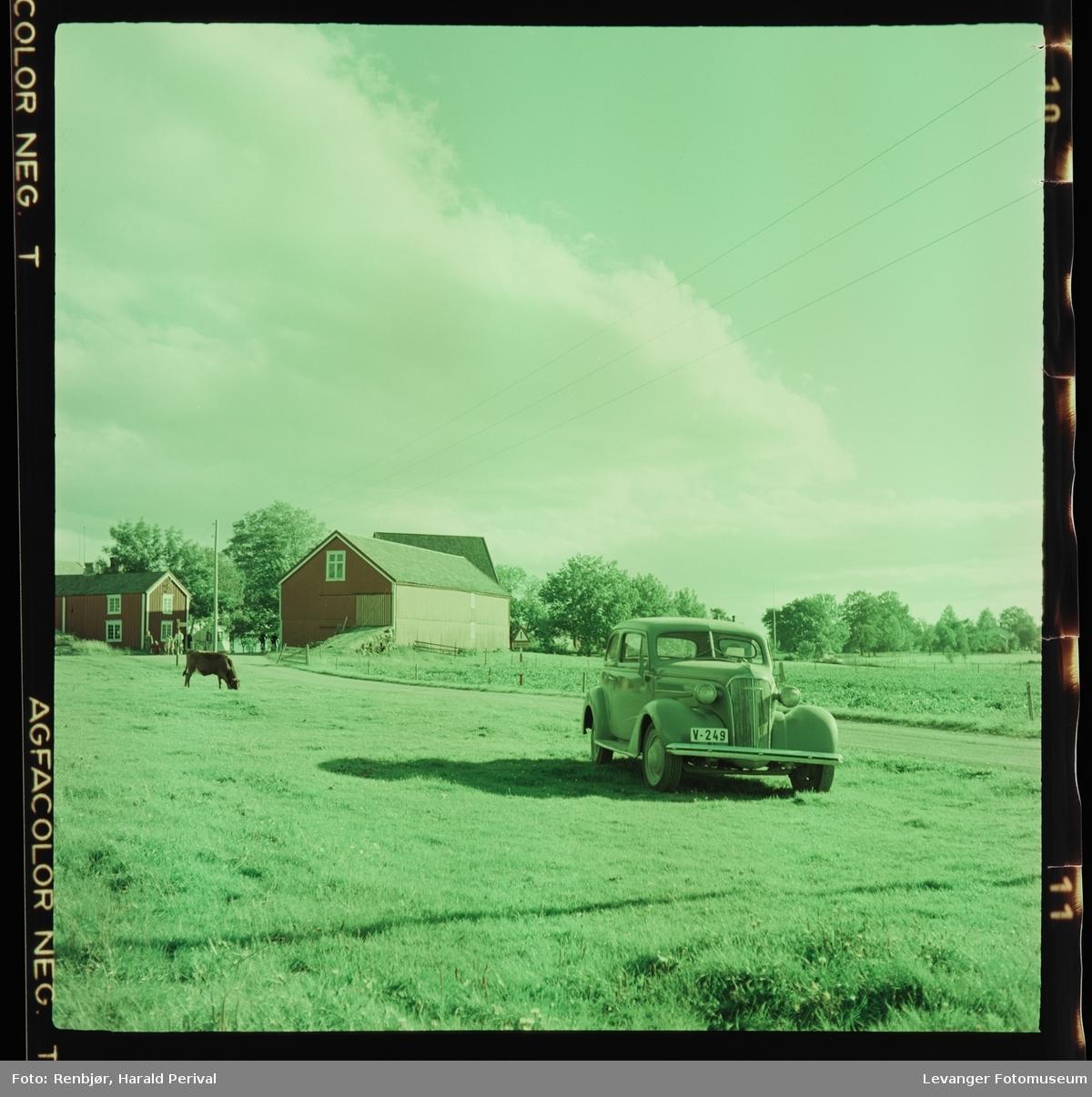 Gårdsbruk på Frosta  like ved Tinhaugen. Driftsbygningene på Logtun vestre , taket på Logtun kirke skimtes i bakgrunnen. Renbjørs bil.