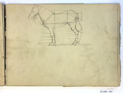 Proporsjonsstudie av hest [Tegning]