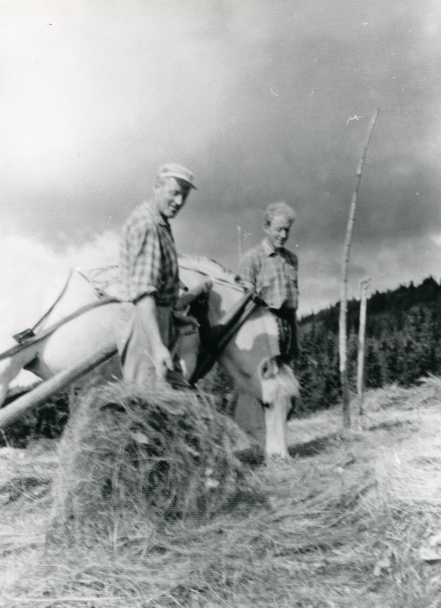 Anton og Ola Bratrud.