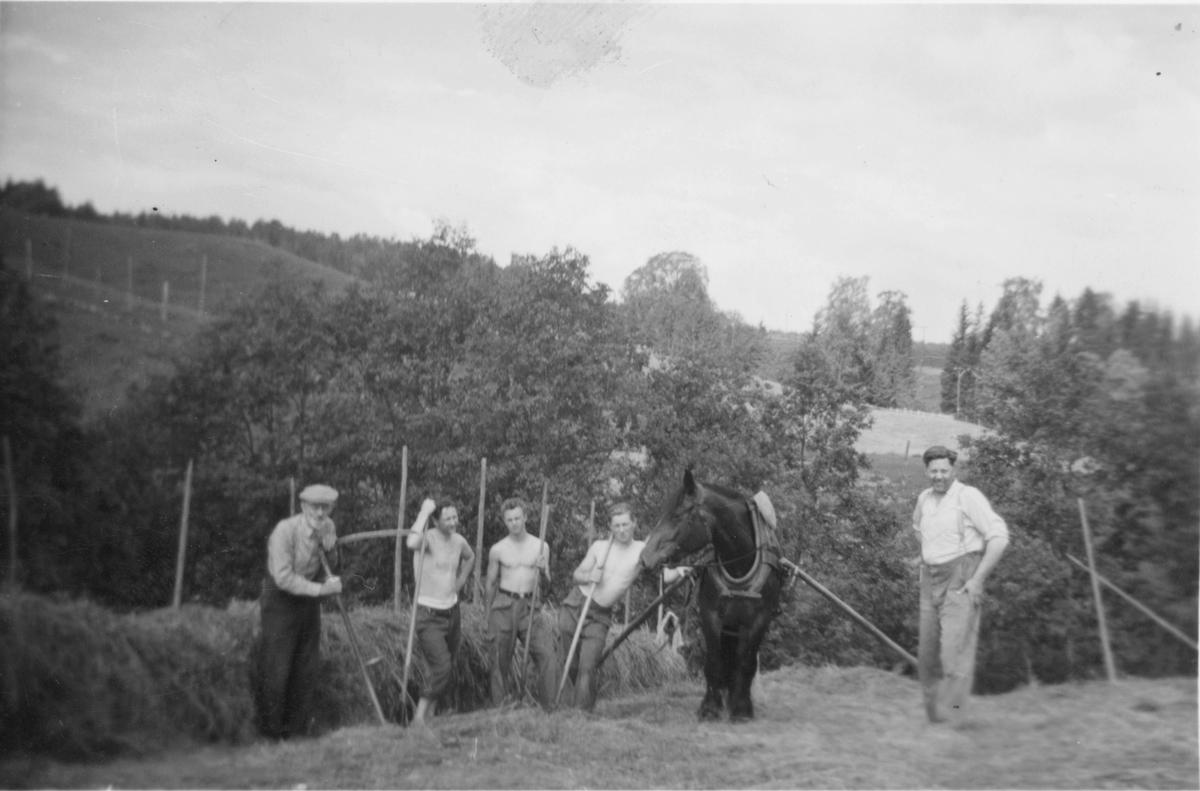 Slåttonn i Søgarn, Gauterud i 1956. Johan til venstre og Hans Ødegaard helt til høyre med slåttekarer i midten.