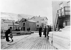 Jürgensenkaia (Mjåvatn) 1956.