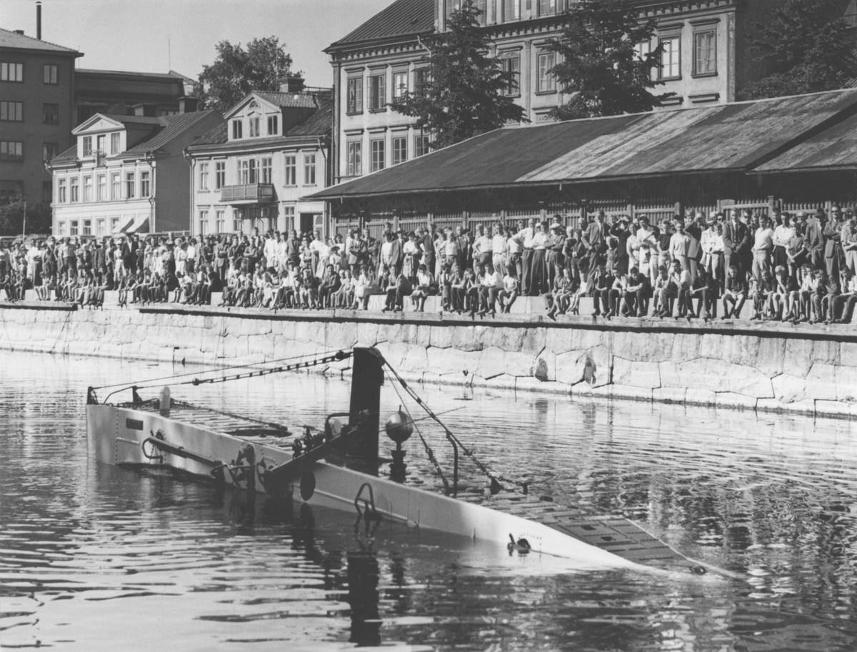 """U-båten Spiggen. Ulf Peder Olrogs visa """"Att segla uppför Fyrisån uti en undervattensbåt..."""" fick idag (1959-07-01) förnyad aktualitet i och med att marinledningen lät ubåten Spiggen göra en fransk visit i Uppsala, där den möttes av stora människomassor. Bilden visar ubåten som kommer upp till ytan efter ett kort besök på Fyris leriga botten."""