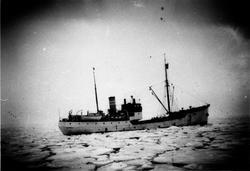 Kanadisk ishavsskute ved New-Foundland.1956.