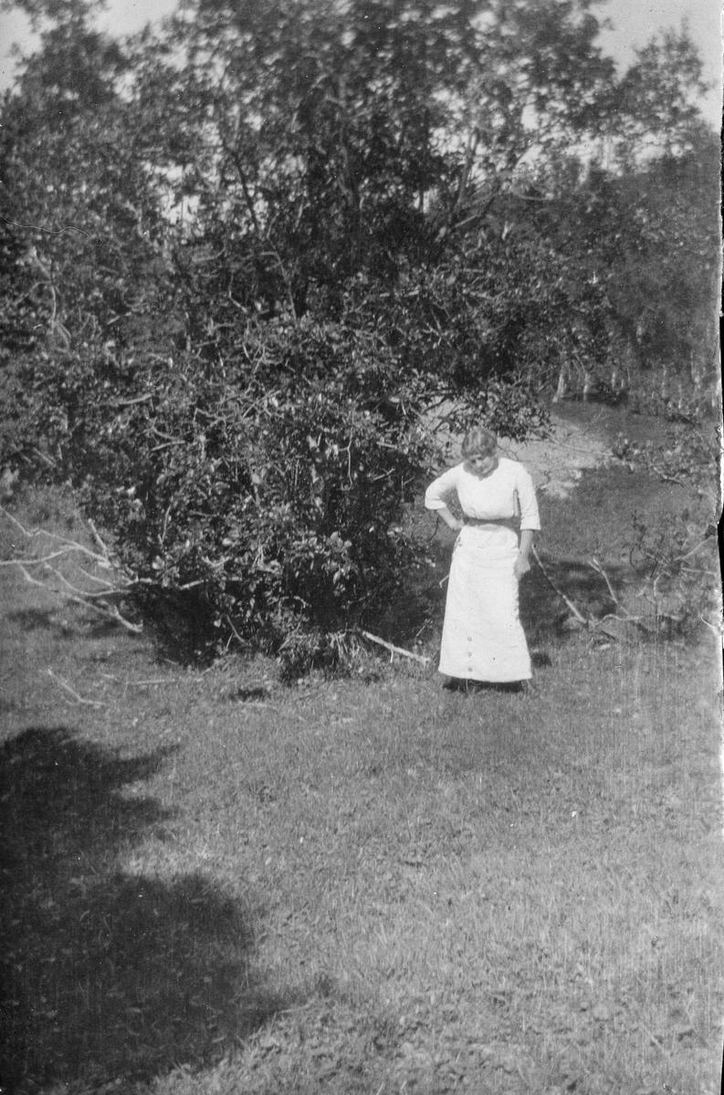"""Kvinne fotografert i sommerlig landskap. """"Fru. Janna Hamborg, Harnes, Lyngen 1912"""""""