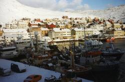 Loddesesong i Honningsvåg. I bakgrunnen deler av bebyggelsen