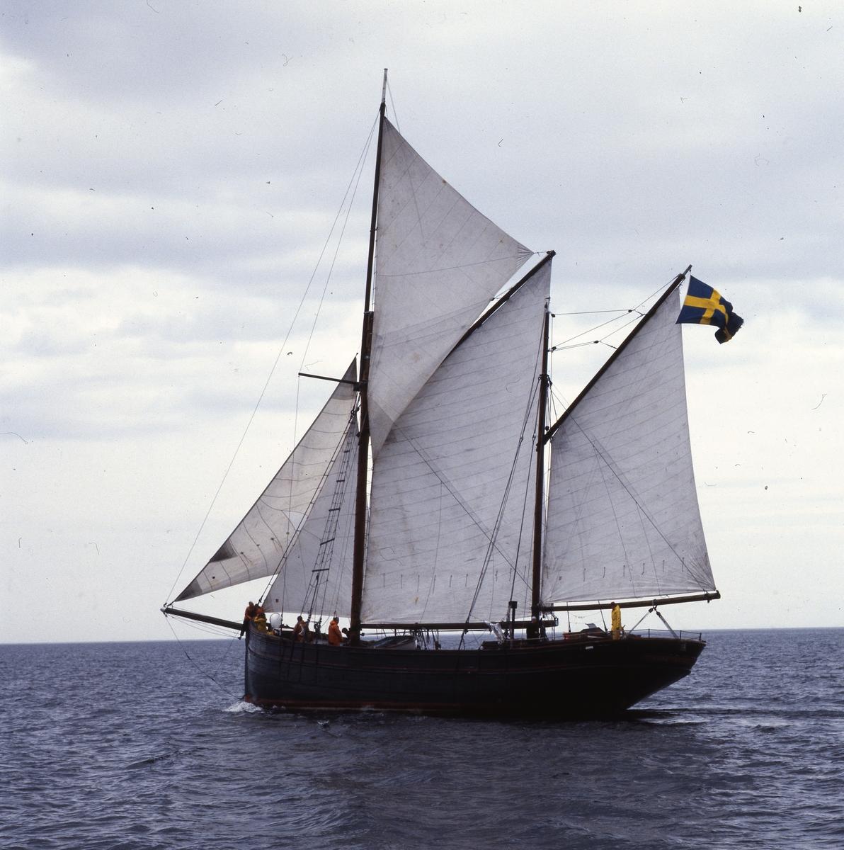 Ett segelfartyg utanför Söderhamnskusten.