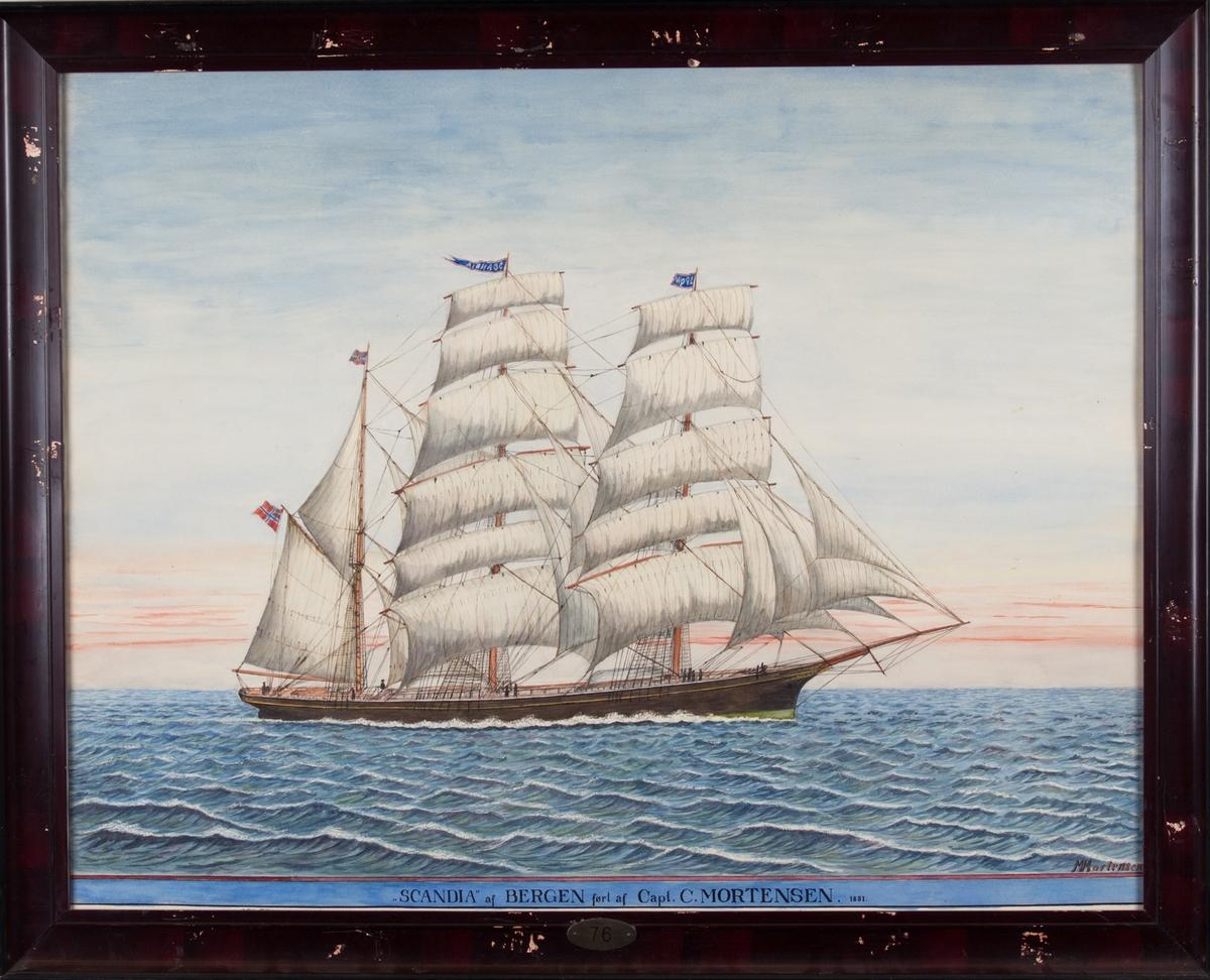 Skipsportrett av bark SCANDIA under fulle seil. Fører unionsflagg akter og vimpel med skipets navn i stormasten.