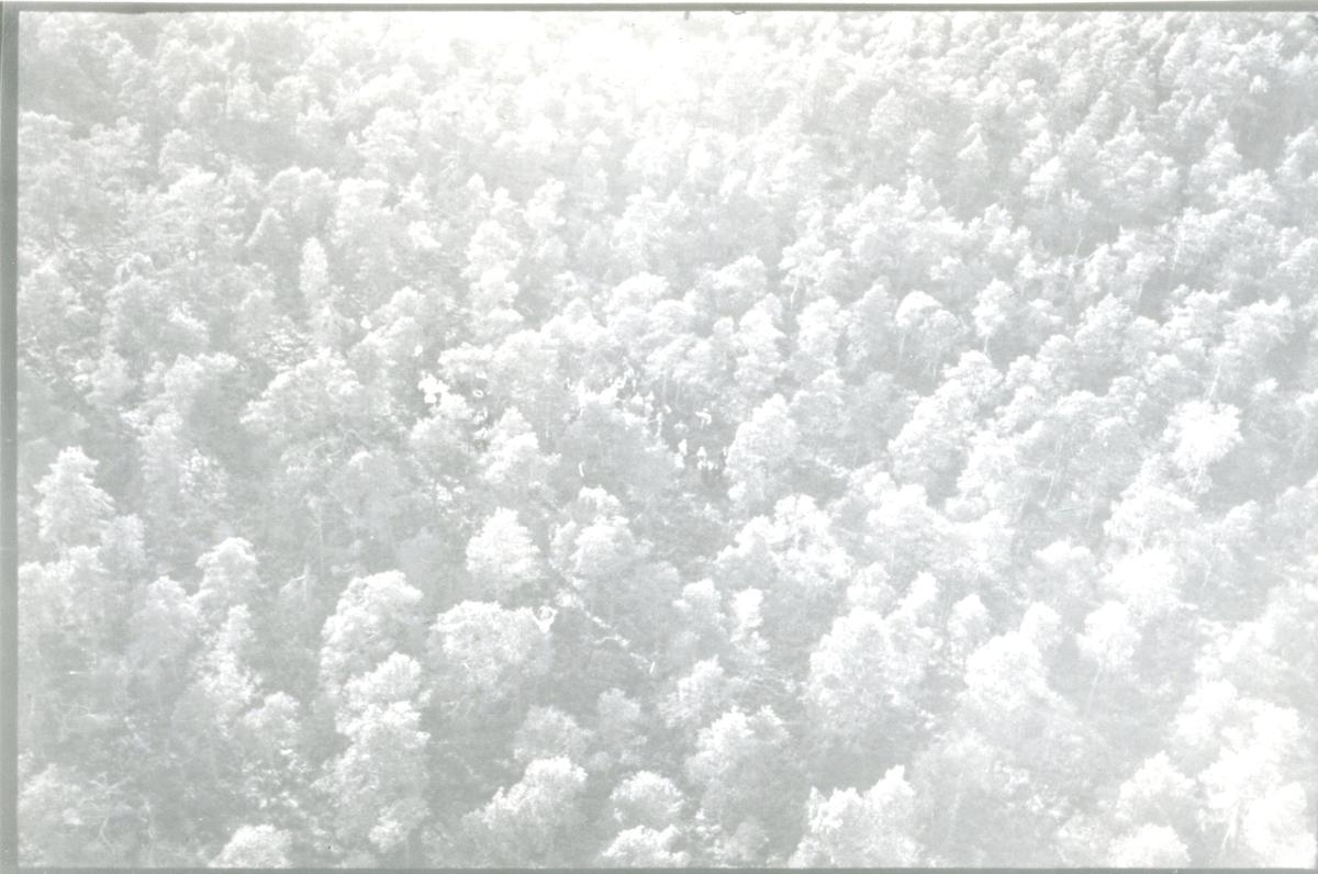 Kulballong m/1930 som startat.