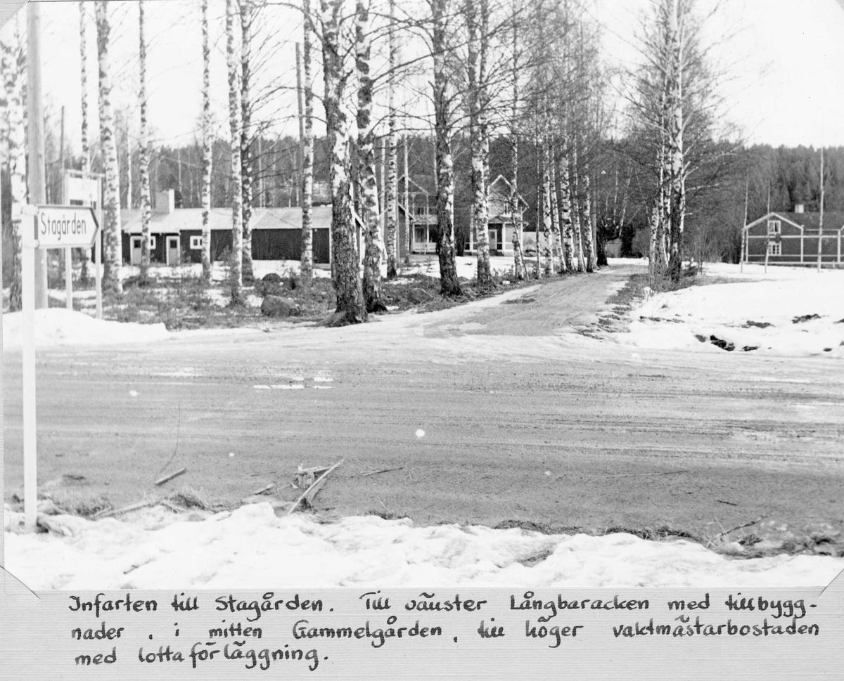 Infarten till Stagården, Bollnäs. Till vänster Långbaracken med tillbyggnader, i mitten Gammelgården, till höger vaktmästarbostaden med lottaförläggning.