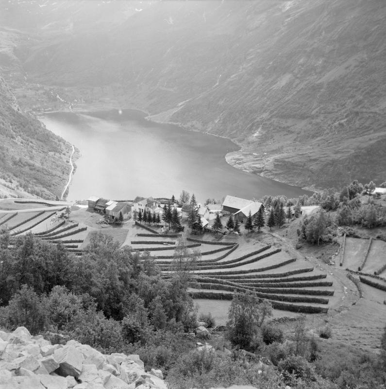 Landskap med gårdsbruk 1958-59