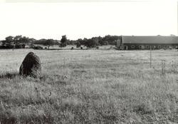 Översiktsbild. Till vänster i bilden bautastenen A51.