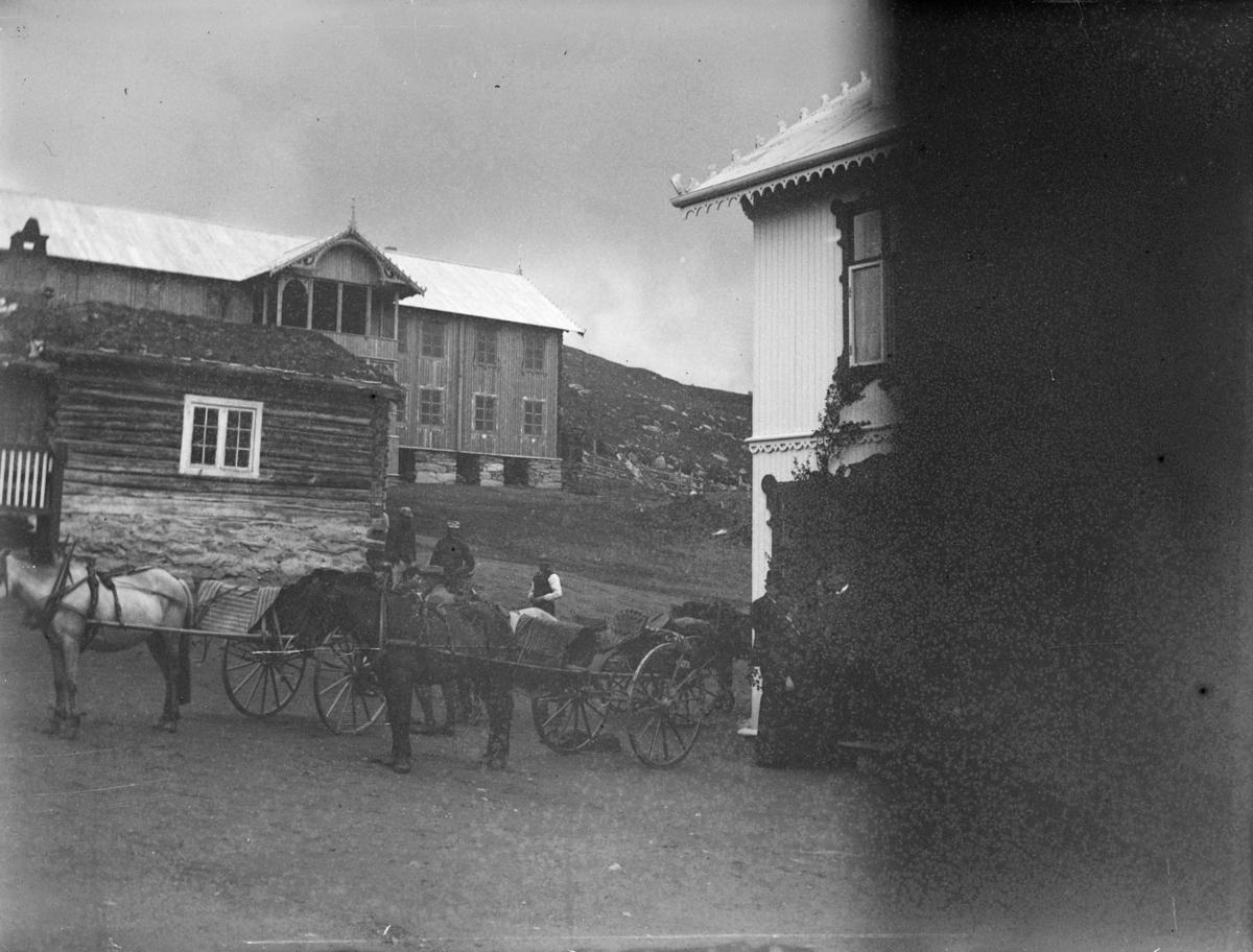Frå Kronprinsesse Stefanies besøk på Hjerkinn fjellstue 1893.