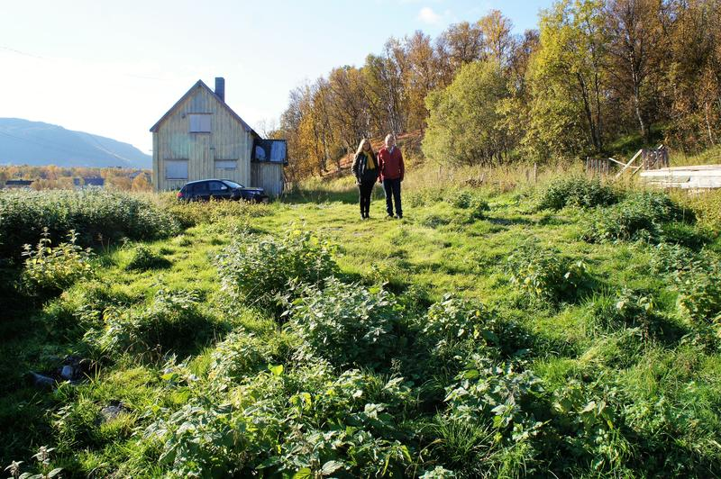 Fjøstomt i Indre Billefjord
