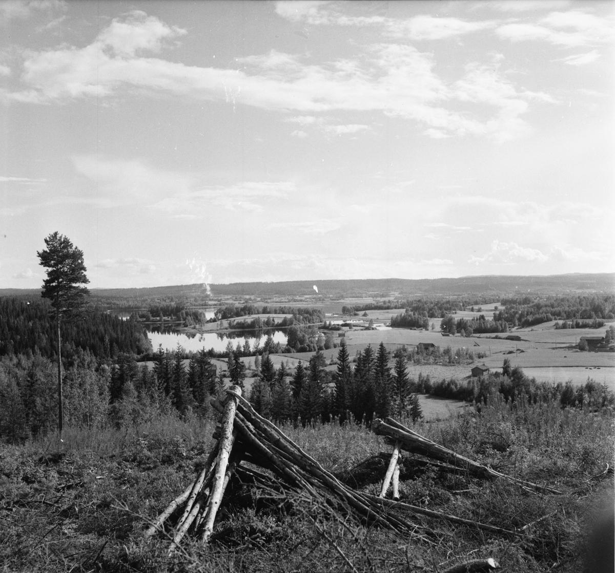 """Vängsbo. """"Såg du det landet"""" Augusti 1956"""