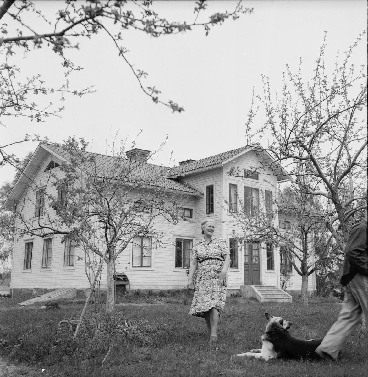 Krister Kristofferson Röste. Reser till Canada 1/6 1956.