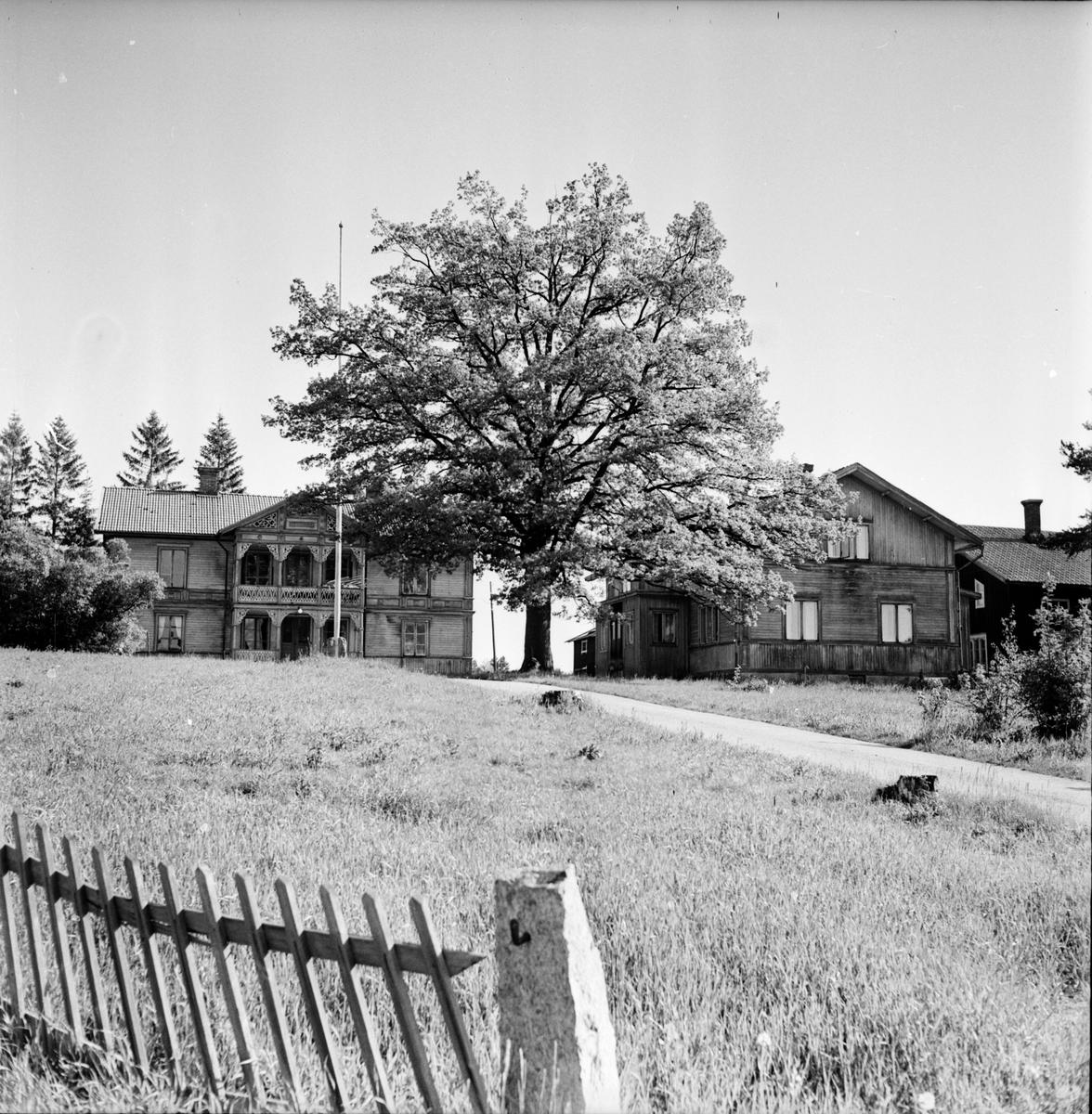 Arbrå, Tomta gård, Juni 1971