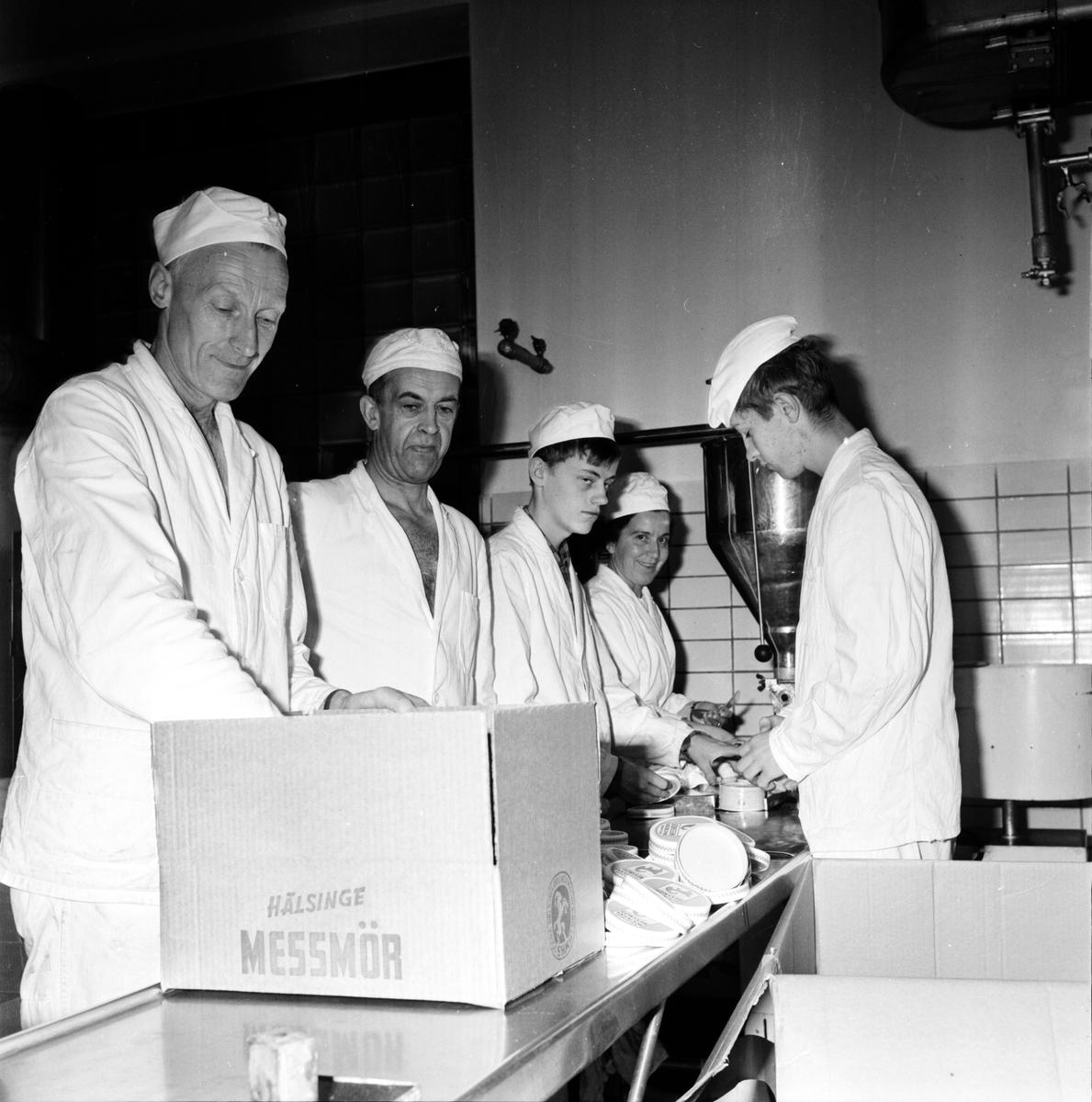 S. Häls. Mejeriförening, Sista messmörsdagen, 1 Nov 1966