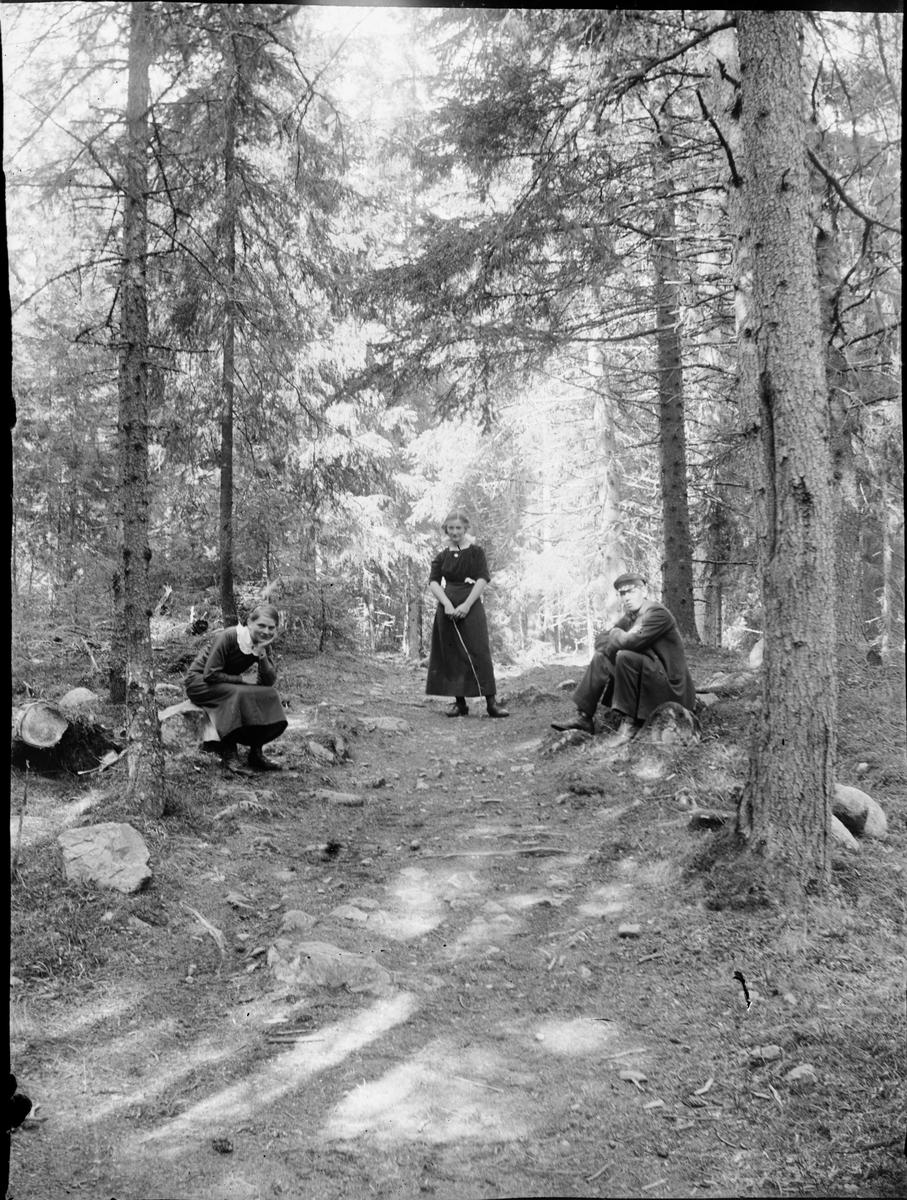 Två kvinnor och en man vid skogsstigen, Östhammar, Uppland