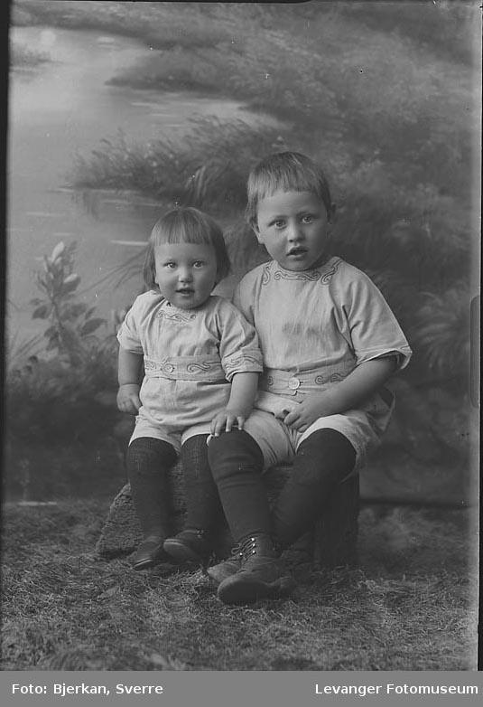 Portrett av to brødre, Olav Kjønstad.