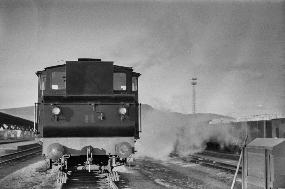 Damplokomotiv type 23b nr. 455.