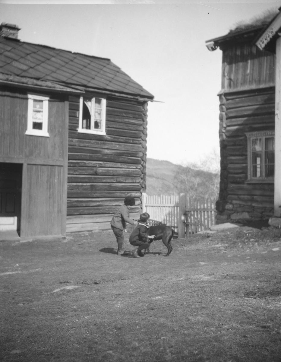 Vågå, Tessand, tunet på Storvik Nordigard med to gutter og en hund