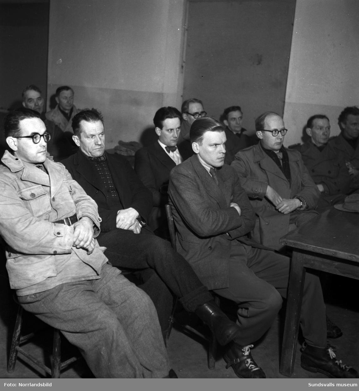 En grupp bilder från SCA:s verksamhet vid bland annat Östrand. Bilder för utställning.