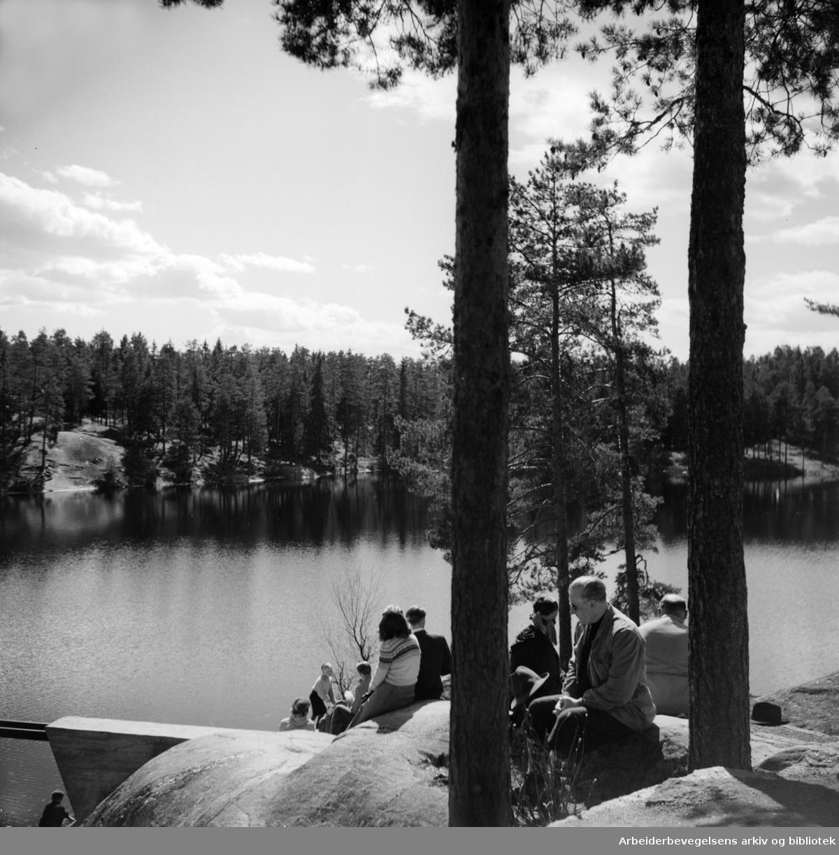 Østmarka, Ulsrudvannet. April 1949