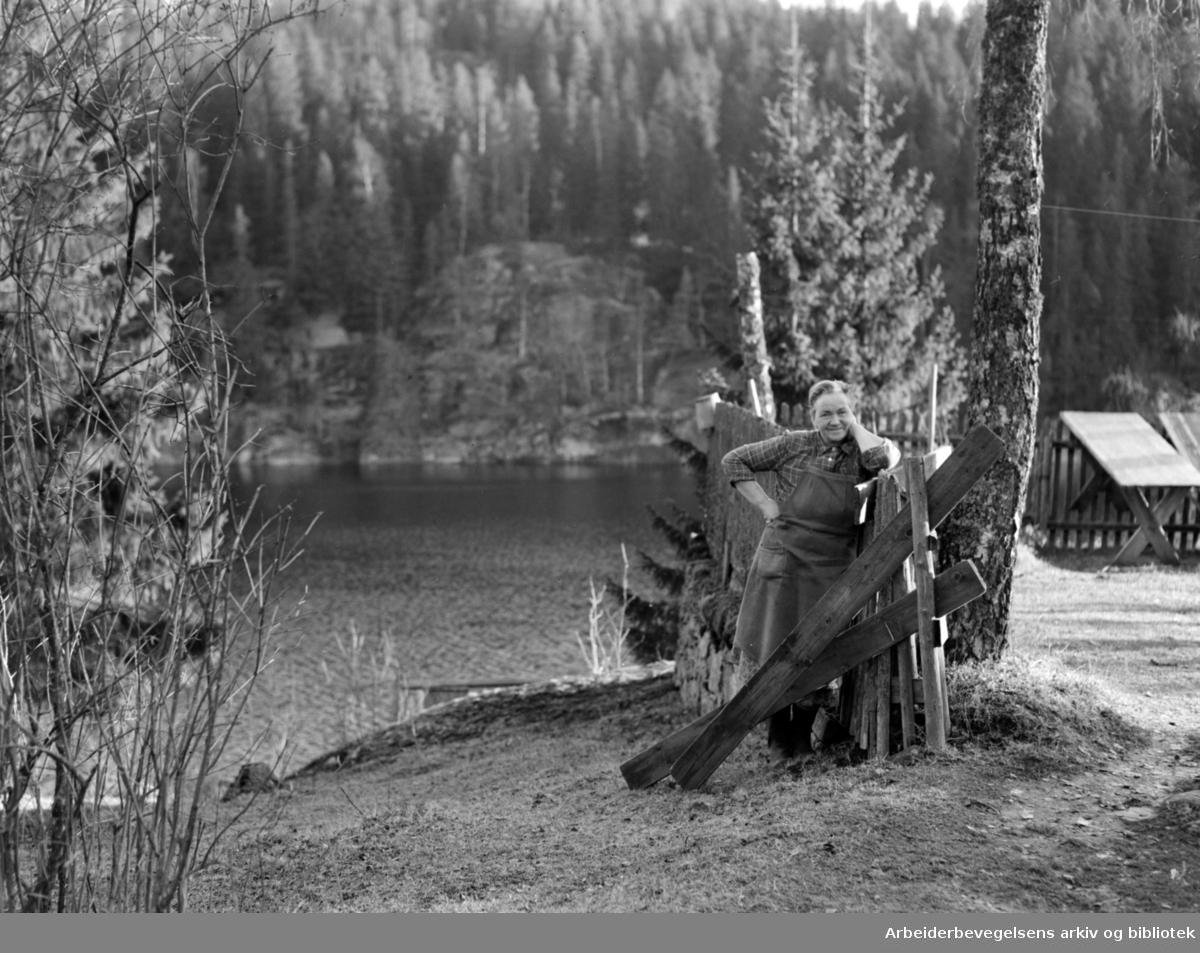 Østmarka ved Elvåga og Mariholtet gård. Therese Stang. November 1953