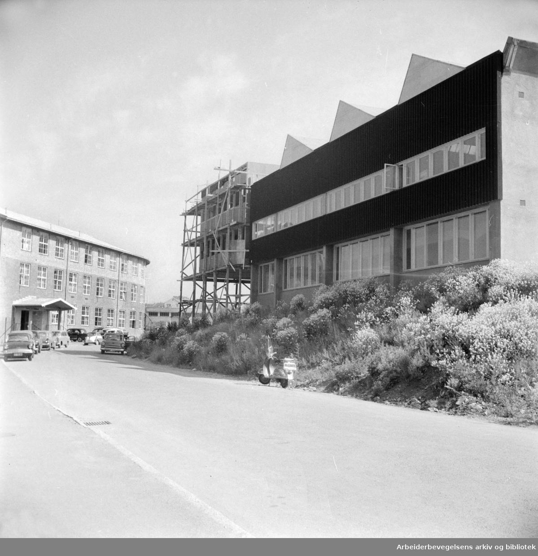 Malerhaugen Industribygg. Juni 1961
