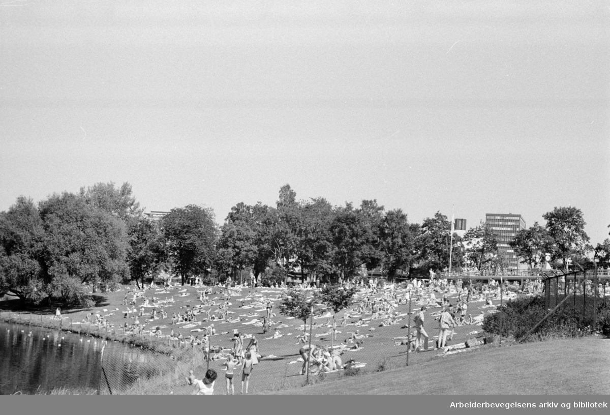 Frognerbadet. August 1967